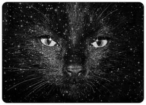cosmic cat 03