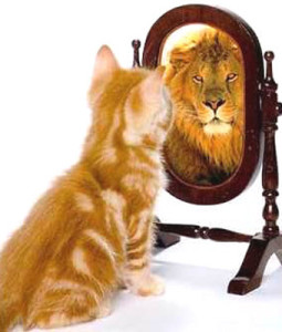 self-esteem-cat-lion